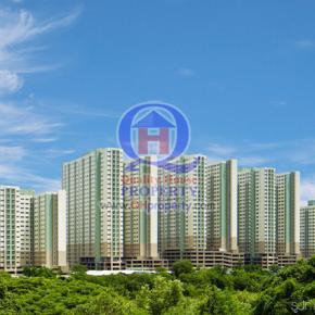 CONDO LPN Mega City Bangna เฟอร์ ไฟฟ้าครบ ฟรีโอน สวย ถูก ด่วน
